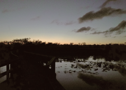 Thumbnail for the post titled: Everglades: Applied Universal Force