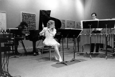 subtropics ensemble (1989)